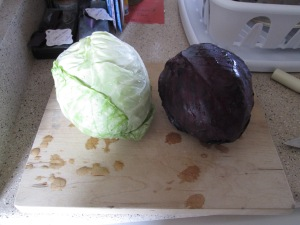The Cabbage!